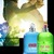 Amor Amor Sunrise, парфюмерия для женщин от Cacharel